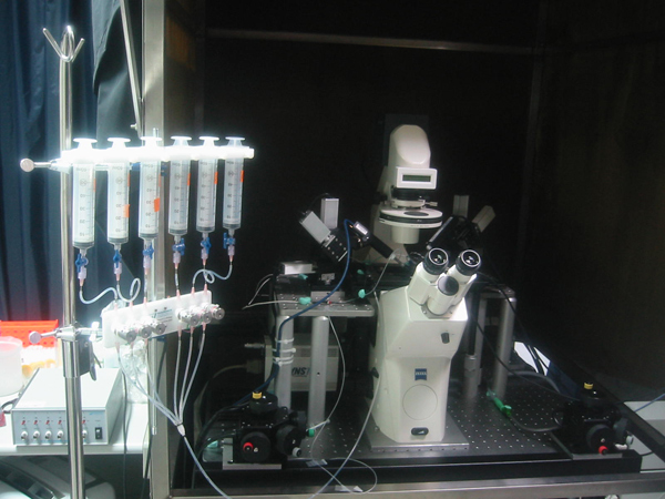 Electrophysiology And Calcium Imaging Core Facility