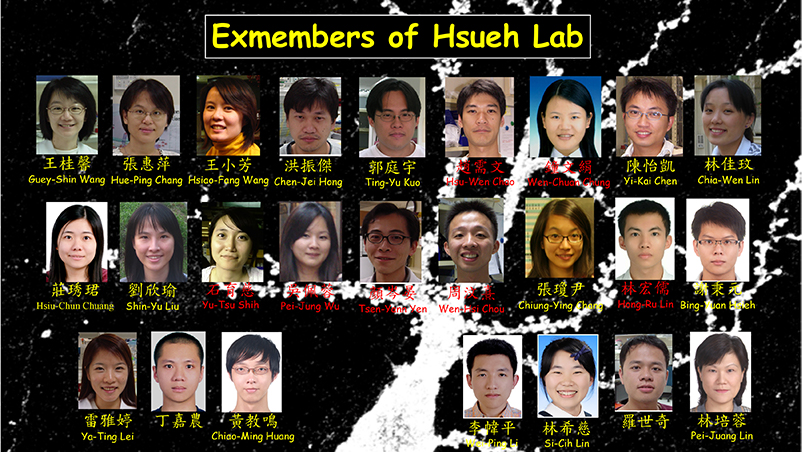 Thesis lab